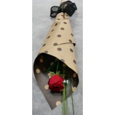 Single Long stem red rose
