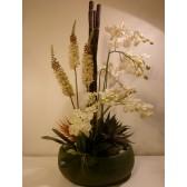 Modern Orchid Pot